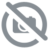 Sweat full zip polaire Femme ACELO/WZ blanc